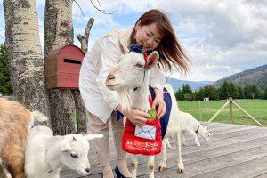 星野リゾートトマムのヤギの郵便屋さん体験