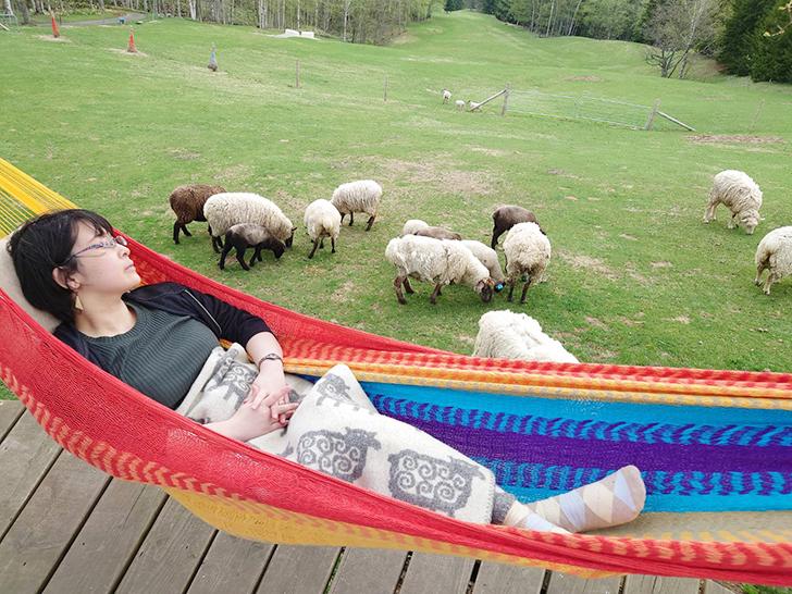 星野リゾートトマム羊とお昼寝ハンモック