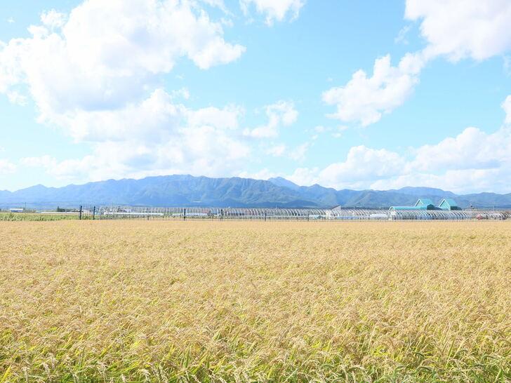 奈井江町PR画像